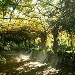 La Concepción Jardín Botánico-Histórico de Málaga © James Souza