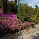 Jardines Puerta Oscura © Miguel Gallegos