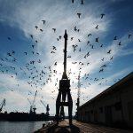 Puerto Industrial de Málaga © James Souza