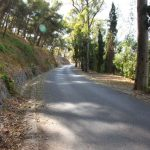 Camino de Gibralfaro Málaga © Dani Ojeda