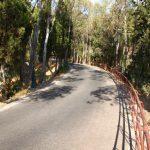 Camino de Gibralfaro Malaga © Dani Ojeda