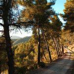 Montes de Málaga © James Souza