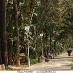 Parque de Malaga © Miguel Gallego