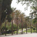 Parque San Miguel Malaga © Area Parques y Jardines